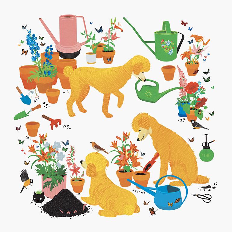 plantsandpoodles